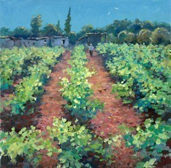 Vineyard, Portugal by James Preston -  sized 16x16 inches. Available from Whitewall Galleries